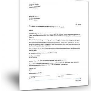 Muster Kündigung Mietvertrag